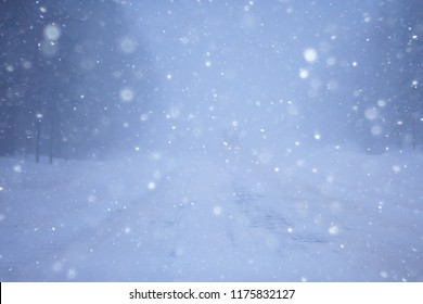 snow fog landscape snowfall / winter landscape cold seasonal weather, nature in winter form, foggy outside