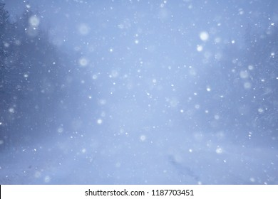 snow and fog on the winter road landscape / view of the seasonal weather a dangerous road, a winter lonely landscape