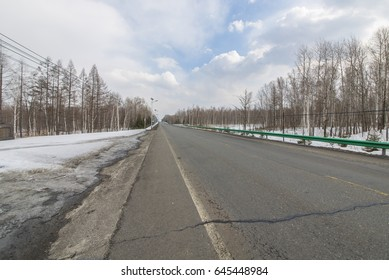 Snow forest road