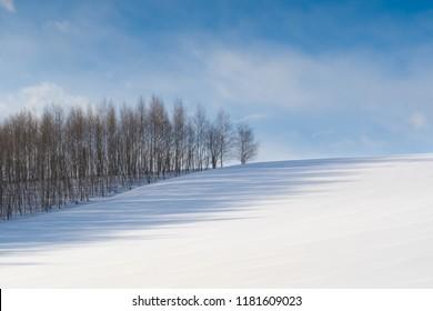Snow hill, white winter in Biei Hokkaido,Japan