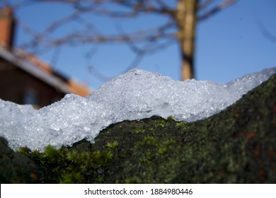 Snow ice peak on a tree trunk