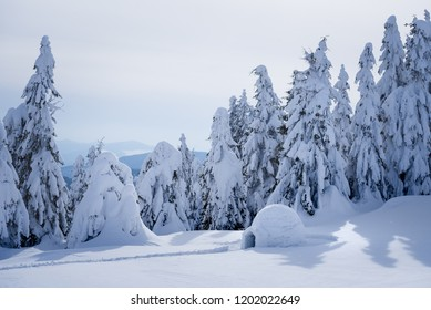 Snow igloo. Winter in the mountains. Landscape with shelter for extreme tourists. Adventure Outdoors