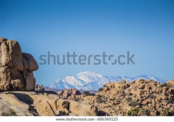 Snow Joshua Tree National Park Stock Photo Edit Now 686360125