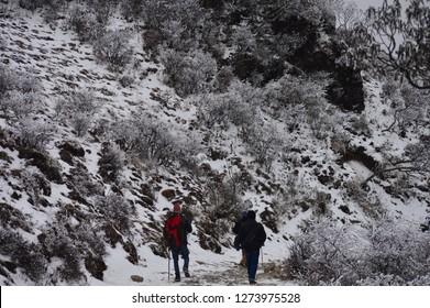 Snow Land Sandakphu, West Bengal