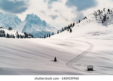 Snow landscape with cross-country trails in the nature park Drei Zinnen, South Tirol, Alps, Italy