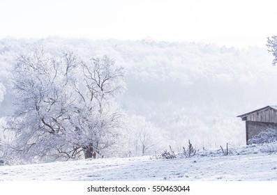 snow landscape magical winter time Nature season Background