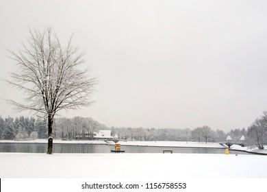 Snow landscape at park Hulsbeek, Oldenzaal, Netherlands.
