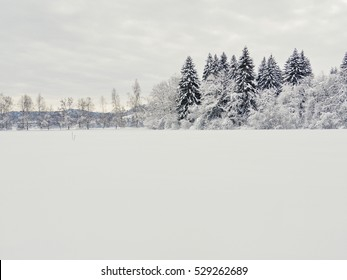 snow landscape winter