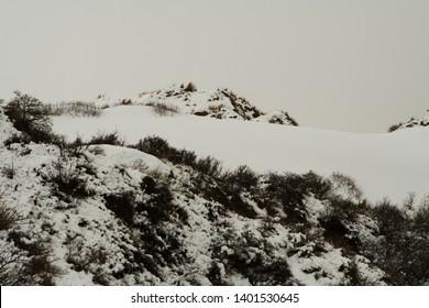Snow landscapes on the Belgian coast.
