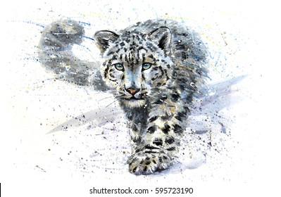 Snow leopard animals watercolor predator wildlife