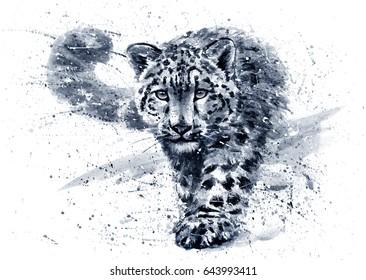 Snow leopard black & white