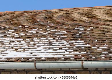 Snow melts - Stock Image