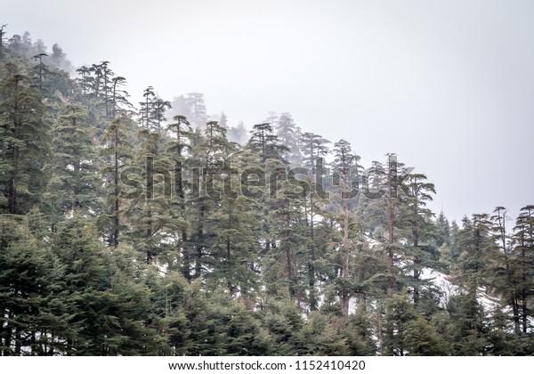 Snow and mountain on michlifen morocco