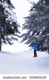 Snow mountain track photography in the forest during winter trekking vertical