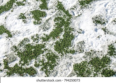 Snow on artificial grass as a background