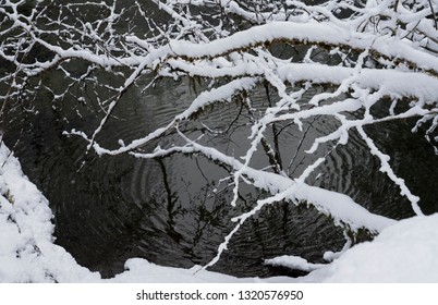 Snow on branches by a river with ripples from water drops and reflections.