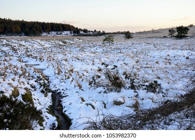 Snow on distrubed ground at Priddy Mineries, Mendip Hills, Somerset