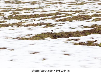 snow on the ground in nature
