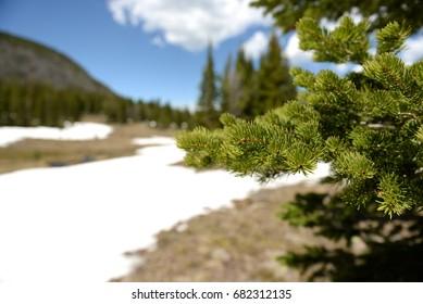 Snow on a mountain hike
