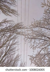 snow on power lines