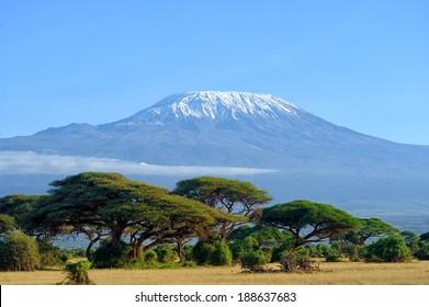Snow on top of Mount Kilimanjaro in Amboseli