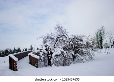 Snow at the park, on the bridge and on the trees, Slovenija