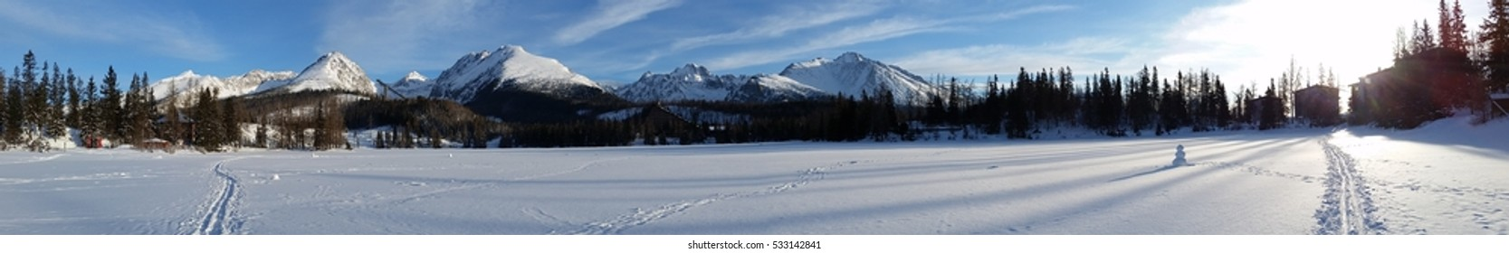 Snow peaked mountain ranges with tall pine trees and a wide flat land covered with snow showig trails of vehicles