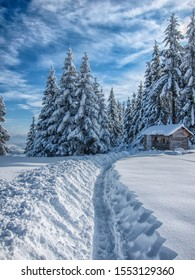 Snow road with a wooden cabin and blue sky
