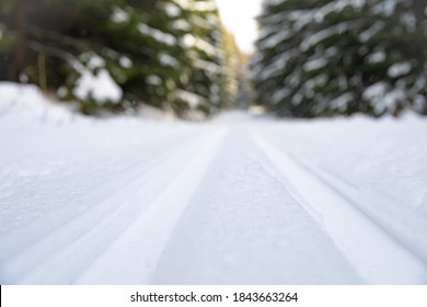 snow running track in winter forest, sport