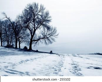 snow scene, blue