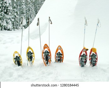 Snow shoes and ski sticks in snow