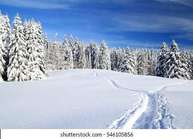 Snow shoes trail in the Jura mountains, Western Switzerland