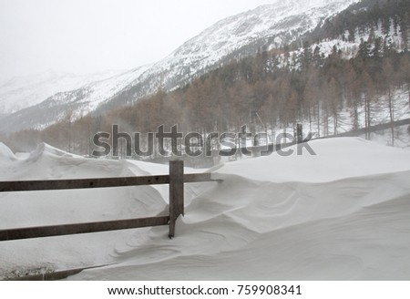 850b03a1ebb5 Snow storm in Italy. Blizzard in the Alps. Winter storm. Drifting snow.