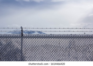 Snow stuck to a chain link fence