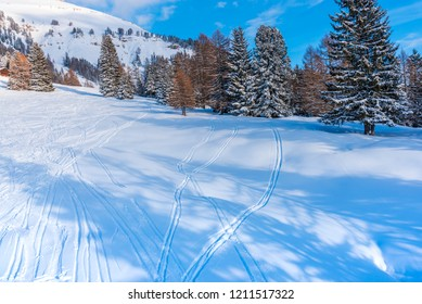 Snow traces on the ski resort