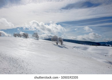 Snow and winter on the Schauinsland by Freiburg