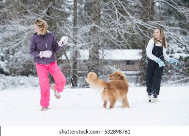 Snowball fight in winter