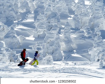 Snowboarder and Beautiful Frozen Forest Covered With Powder Snow as Snow Monsters at Mount Zao Range, Zao Juhyo Festival, Yamagata , Japan