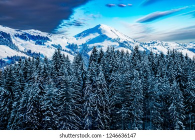 Snowcapped forest in front of the austrian alps.