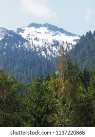 Snow-capped mountains with green forest