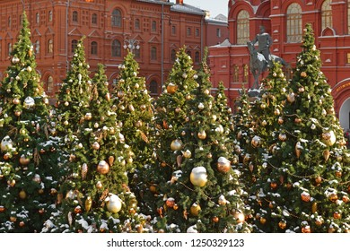 Snow-covered Christmas trees on Manege Square in Moscow. Russia
