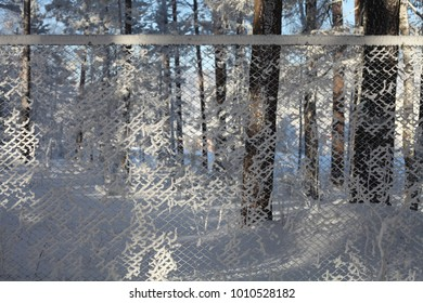Royalty Free Snow-covered Fence Stock Images, Photos