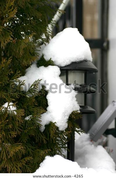 snow-covered garden light