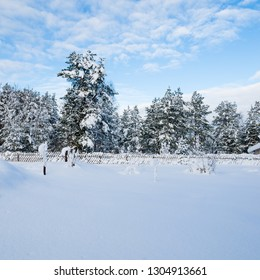 Snow-covered landscape in the countryside. Viitna, Estonia
