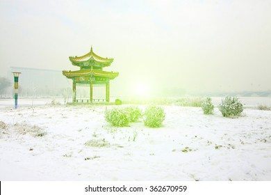 snow-covered landscape in a park, closeup of photo