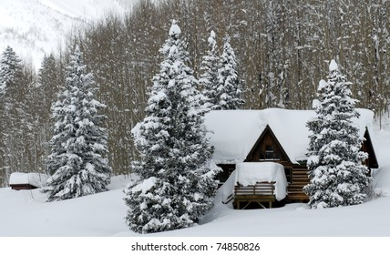 Snow-covered log cabin with two trees in front