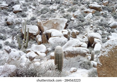 Snow-covered mountains in the southwest desert