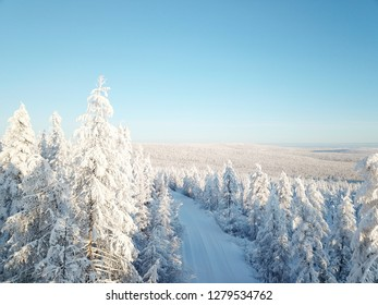Snow-covered pine and fir forest from a bird's-eye view on a bright sunny day in Yakutia, in Siberia in northern Russia, the harsh nature of the north in the zone of absolute cold