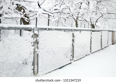 Snow-covered Rabitz grid. Lattice fence covered with fresh snow. Winter background texture. White background texture