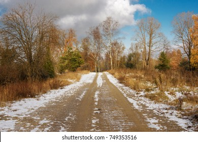snow-covered road among the trees in late autumn